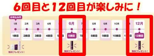 日本ライフ製薬 リフトセラムの定期購入の特典