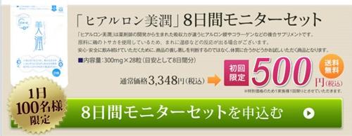 ヒアルロン美潤を500円モニターセット